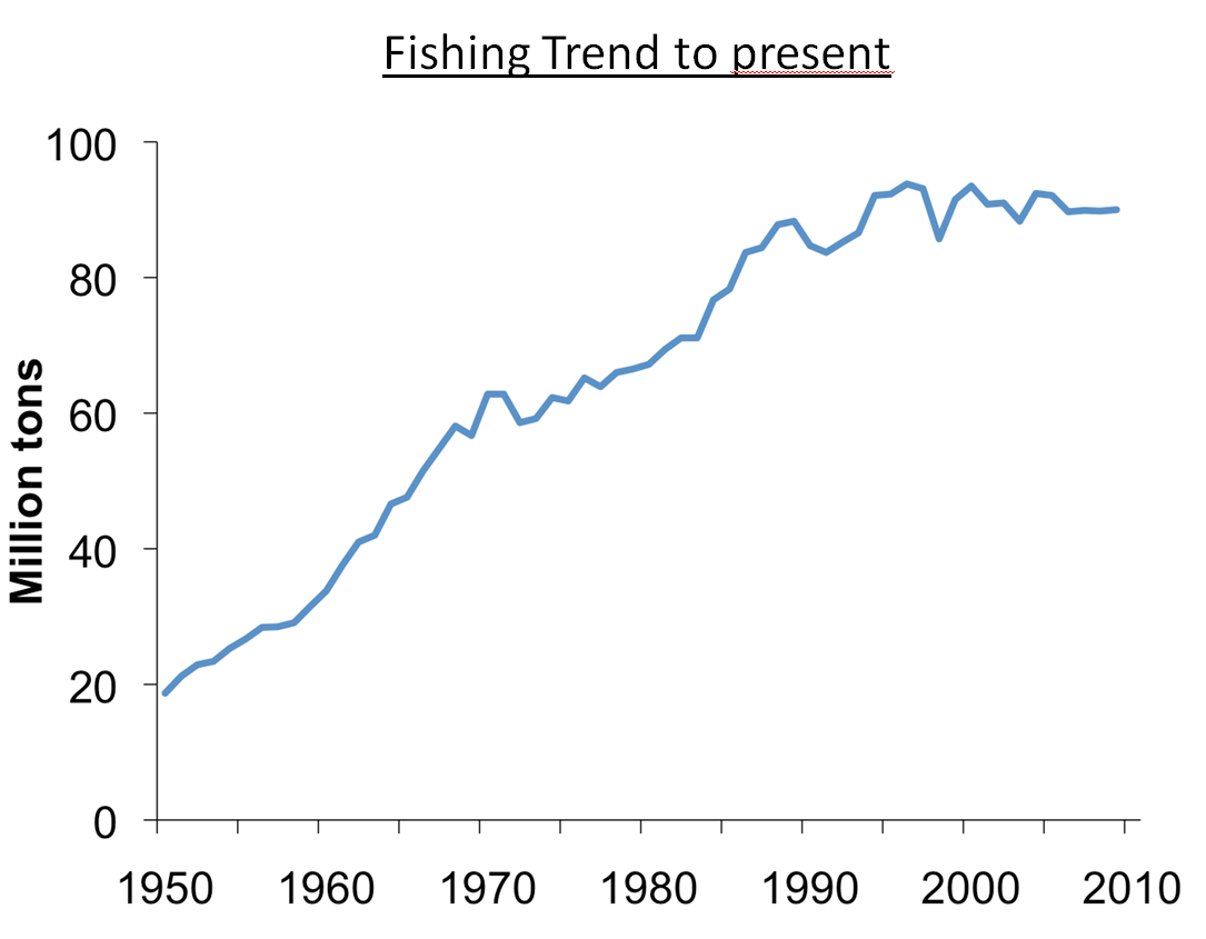 fishing trend to present