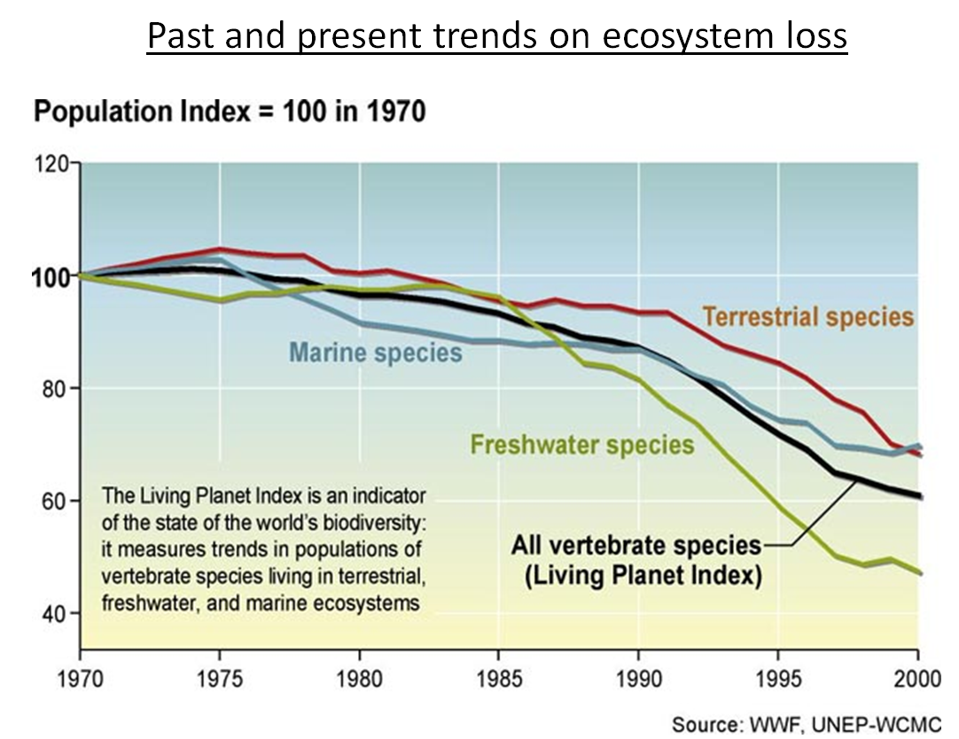 past and present trends on ecosystem loss