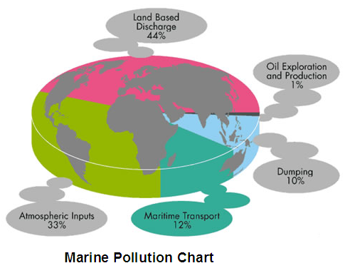 pollution and marine life essay Research paper on marine pollution april 29, 2013 writer research papers 0 marine pollution is caused by discharges of harmful substances into the marine environment as a result of human activity.