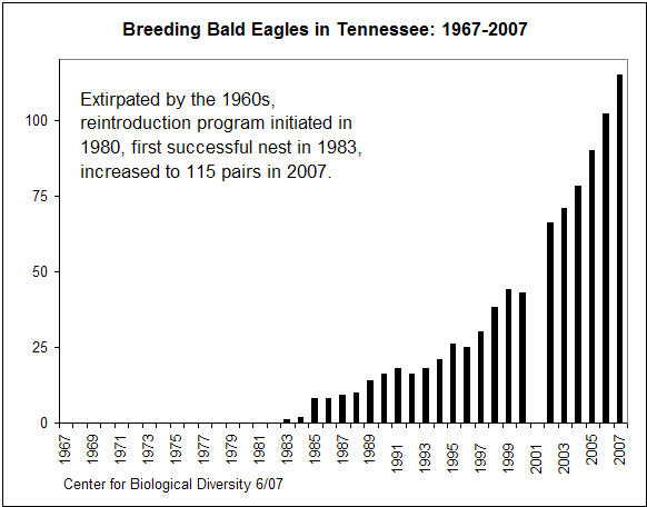 Breeding of Bald Eagles in Tennessee