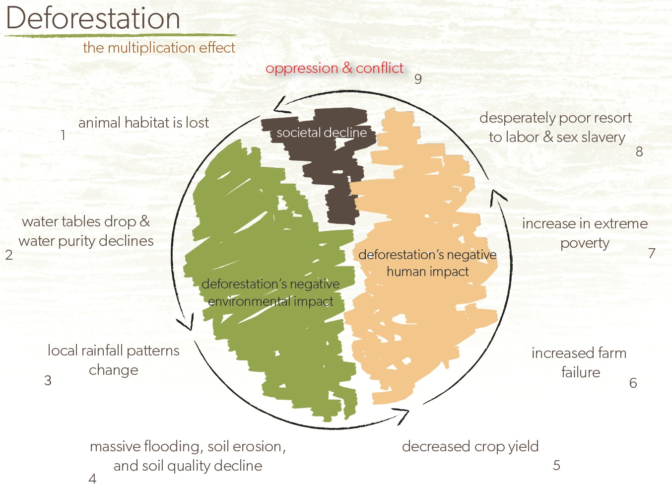 Deforestation - The multiplication effect