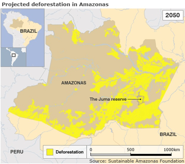 Projected deforastation in Amazonas