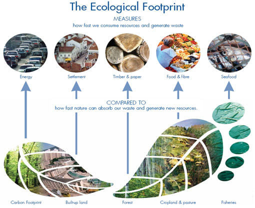 The Metrics for Measuring the Ecological Footprint of Humans on Planet Earth