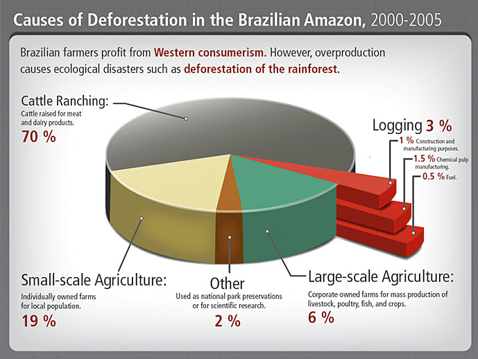Causes of deforestation in the brazilian amazon
