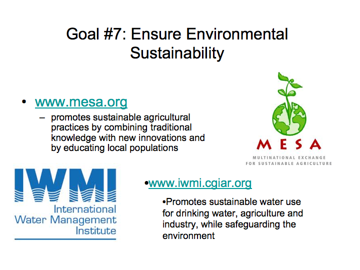 Organizations Working to Create Environmental Sustainability