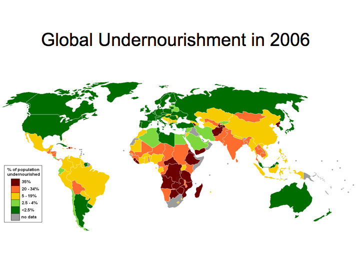 Global Undernourishment (2006)