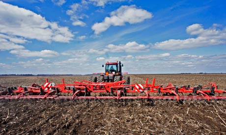 Agricultural farmland in Ukraine being prepared for planting wheat. Photograph: