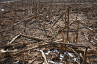 Drought in China has affected 6.5 million hectares of farmland, the Office of St