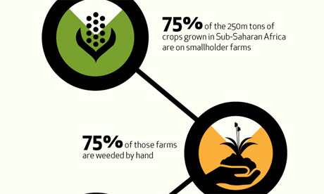 he female face of farming: infographic