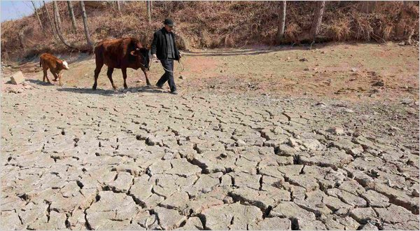 U.N. Food Agency Issues Warning On China Drought